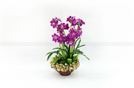 Mẫu hoa lụa đẹp H21