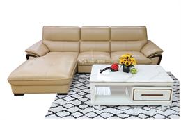 Sofa phòng khách mã NTX704