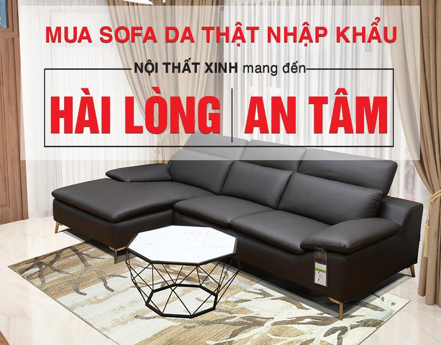 Lý do chọn mua ghế sofa nhập khẩu Nội Thất Xinh