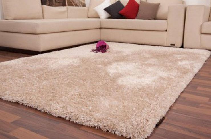 Các mẫu thảm lông rất được các gia đình tin tưởng lựa chọn.  Đặc biệt là khi mùa đông đến